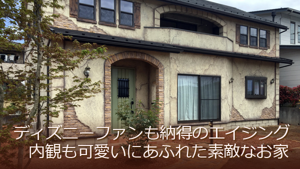 ディズニーファ愛犬も喜ぶドッグランのお庭に自然素材の塗り壁の可愛い家ンも納得するエイジングが可愛い家